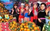 Sẵn sàng cho Hội chợ Cam sành Hàm Yên, tỉnh Tuyên Quang lần thứ II